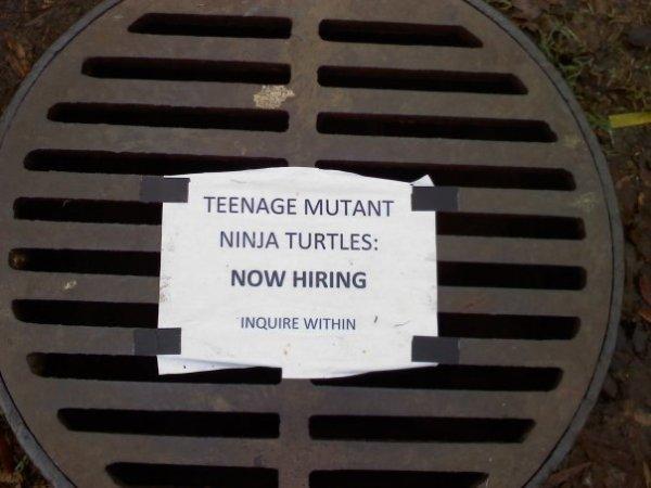now hiring vacatureluurs